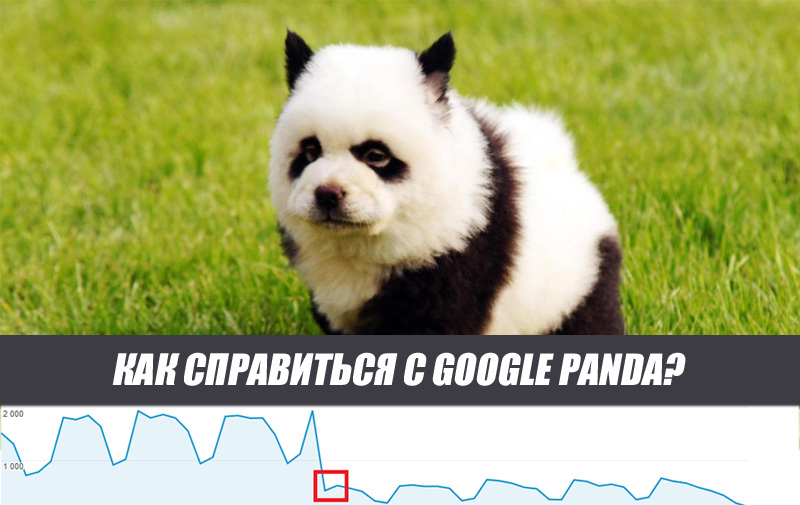 Вывод из-под Google Panda